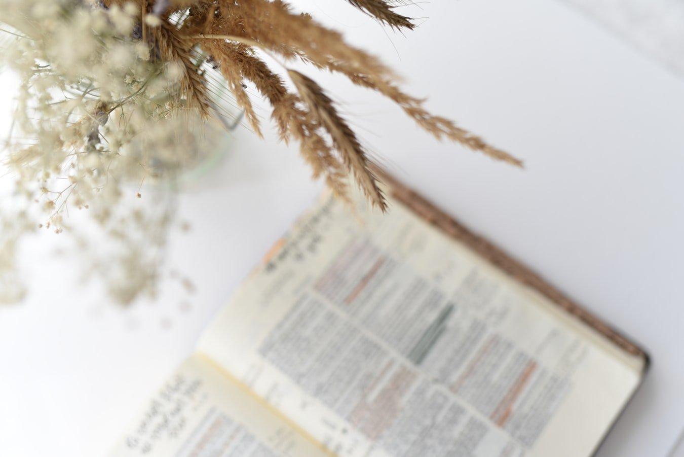 10 Ayat Emas Alkitab Tentang Keberhasilan dalam Dunia Bisnis