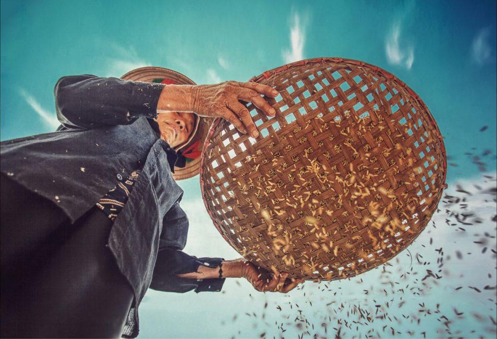 Saham HOKI Stabil, Produsen Beras Kemasan Masuk Pasar Tradisional