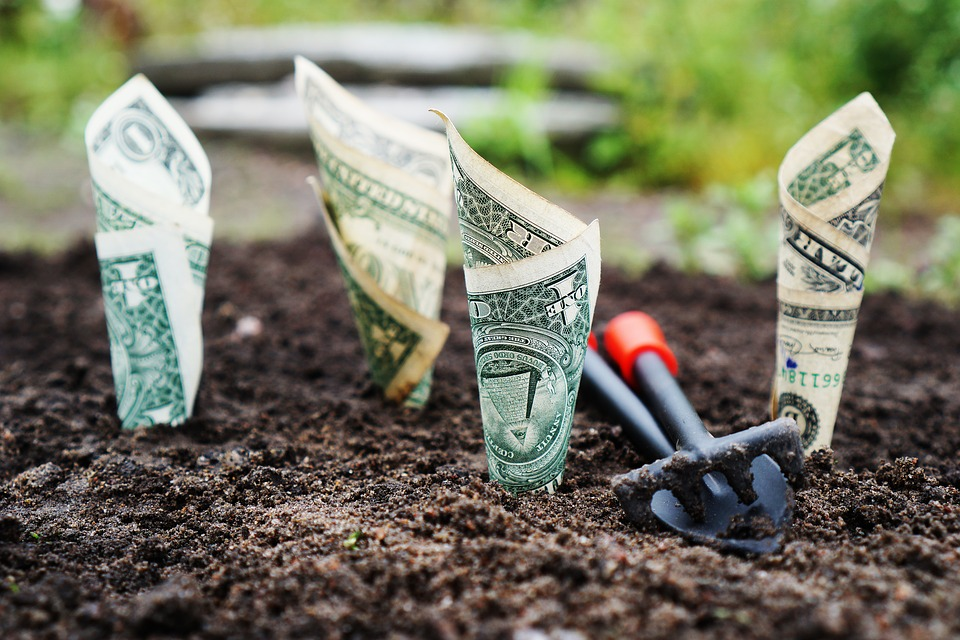 Cek Suku Bunga Deposito BCA untuk Simpan Uang