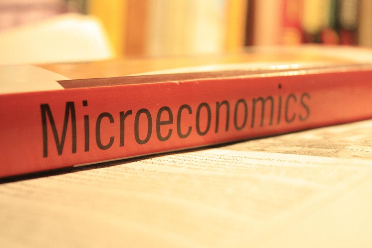 Mengetahui Seluk Beluk Ekonomi Mikro dan Perannya