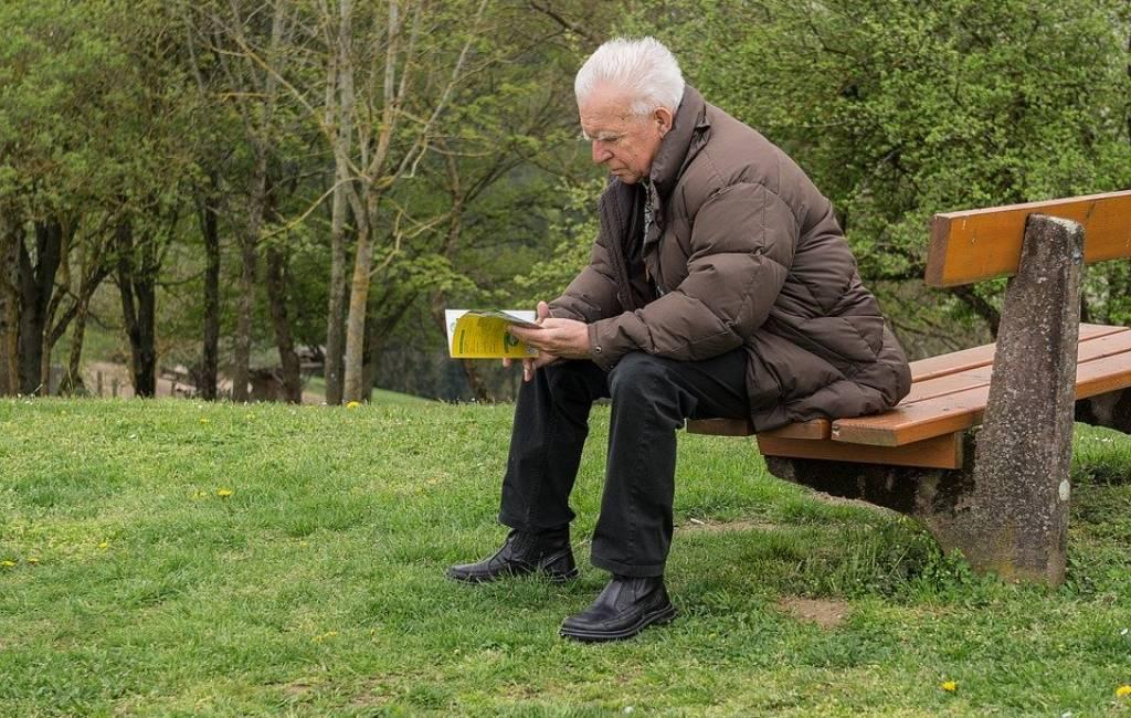 Pensiun Dini