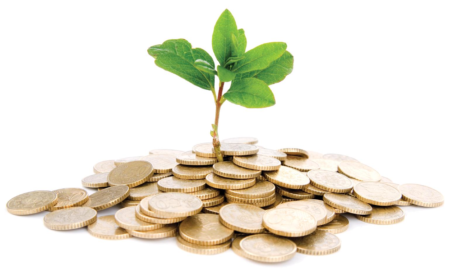 Investasi Jangka Panjang: Cara Mengoptimalkan Keuntungannya