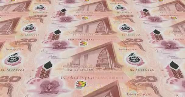 mata uang papua nugini