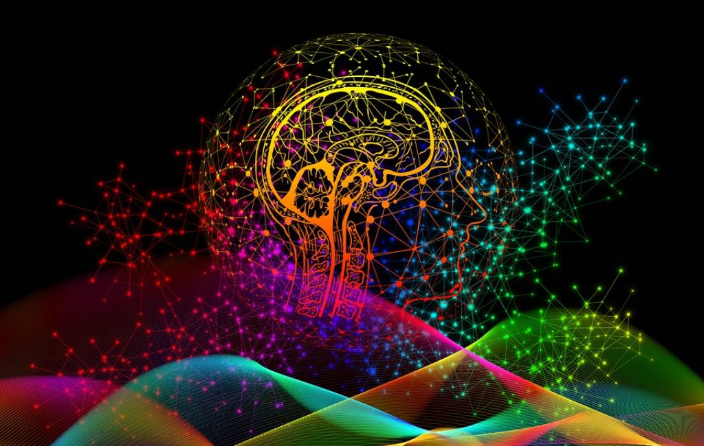 Sistem Otak