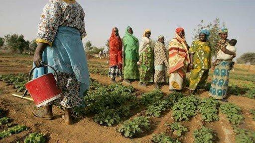negara termiskin - niger