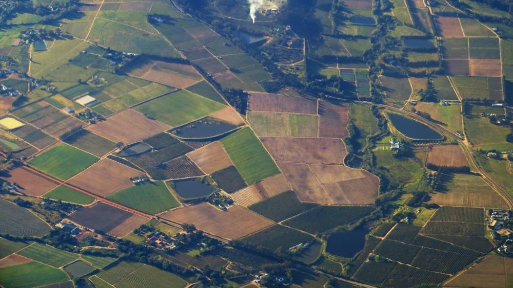 Ilustrasi lahan tanah yangdijual.